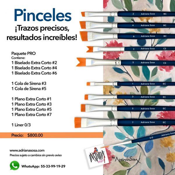Pinceles Paquete PRO