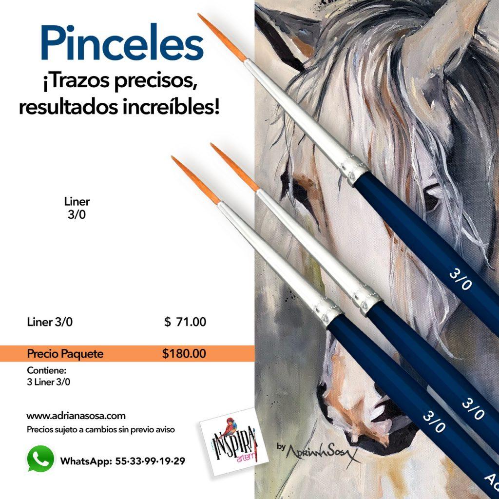 Paquete de Pinceles Liner